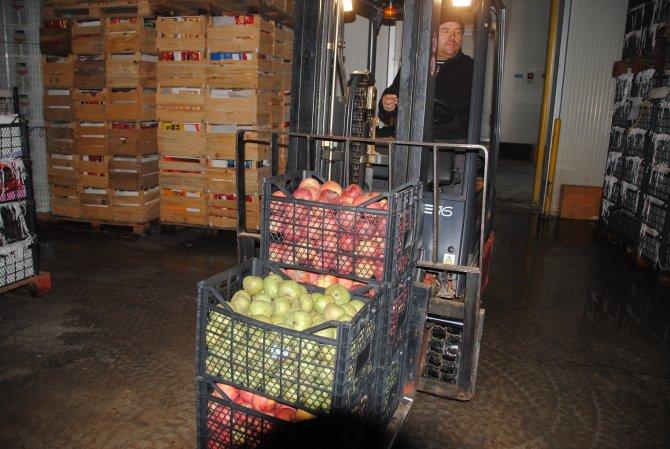 Rusya krizi soğuk hava depolarında bekleyen meyve fiyatını yarıya düşürdü
