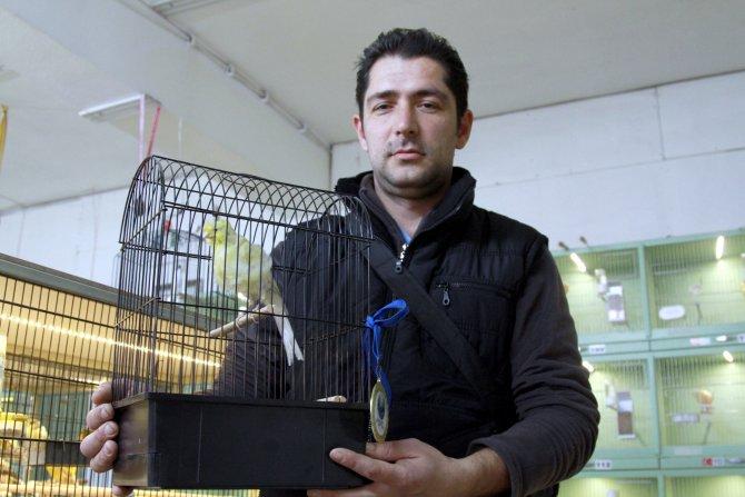 Türk kanaryaları 22 dalda dünya şampiyonu