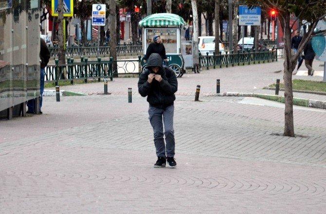 Bursa'da Lodos Tehdidi Geri Döndü