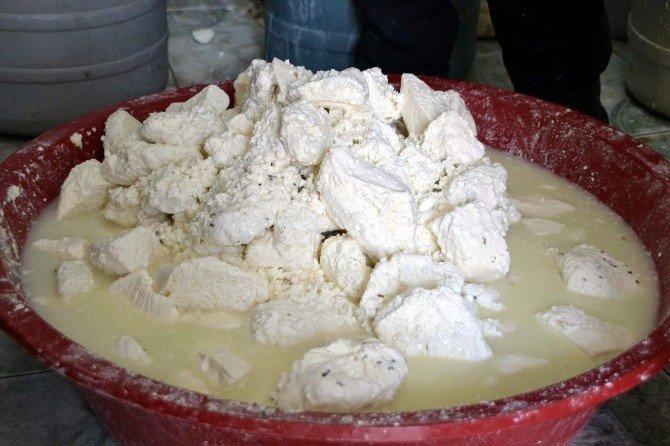 Terör Peynir Satışlarını Da Vurdu