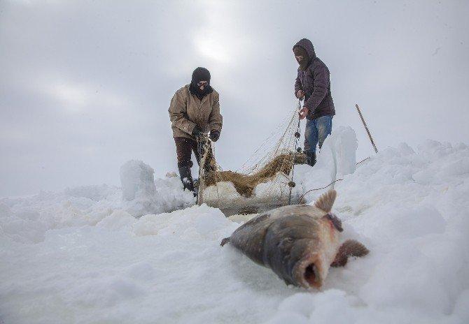 - Saatlerce Uğraştılar Sadece Bir Balık Tutabildiler