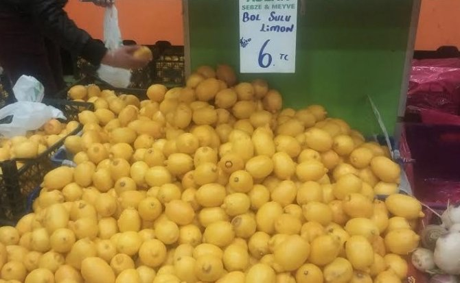Ortaca Ziraat Odası Başkanı Çöllü: Limon hazirana kadar 20 lirayı bulabilir
