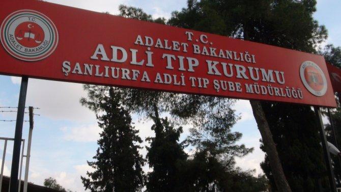 Otopsi için Cizre'den Şanlıurfa'ya 20 ceset getirildi