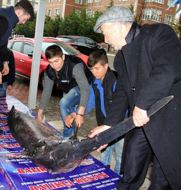 Yakalanan Dev Kılıç Balığı Ekmek Arası Ücretsiz Dağıtılacak