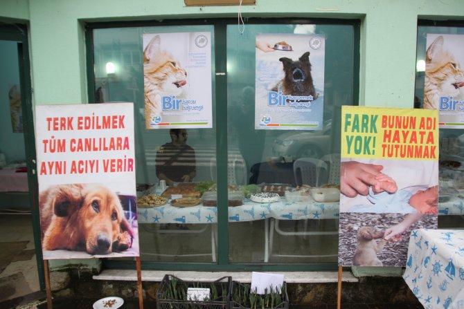 Sokak hayvanları için kermes düzenlendi