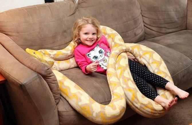 Çocukların 5 Metrelik Piton Yılanı İle Tehlikeli Oyunu