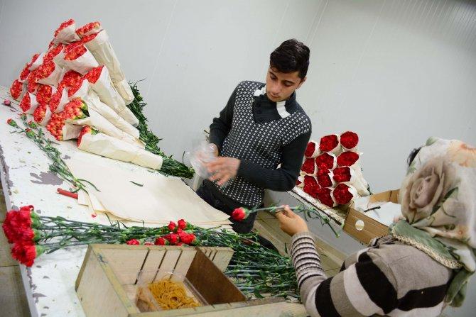 Rusya'ya kesme çiçek ihracatı sıfırlandı