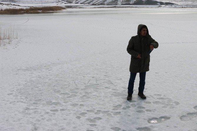 Sivas'ın Kuş Cenneti Tödürge Gölü Dondu