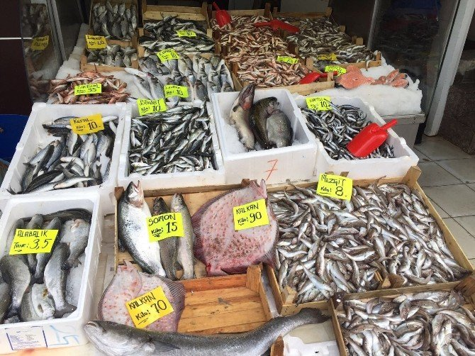 Kalkan Balığının Kilosu 90 Lira Oldu