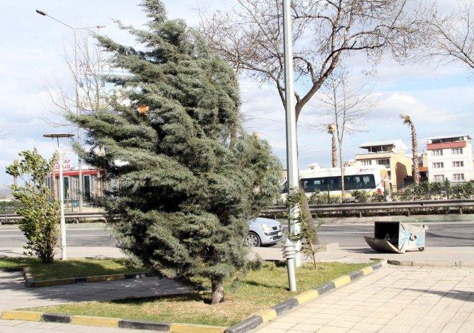 Bursa'da lodos etkili oluyor
