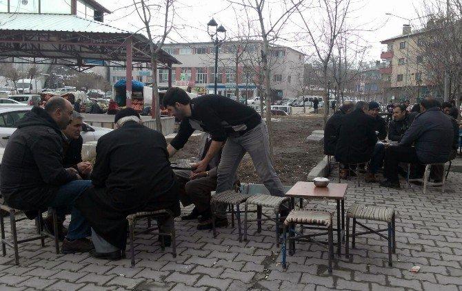 Adilcevaz'da Bahardan Kalma Günler Yaşanıyor