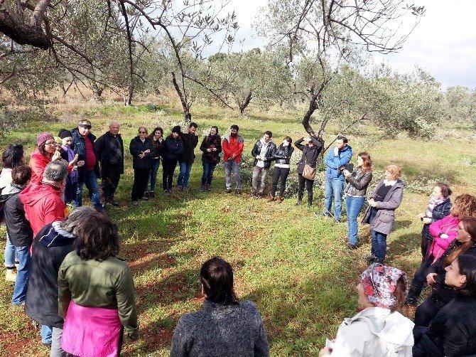 40 Kişilik Gönüllü Grubu, Çocukları Zeytinpark' La Buluşturacak