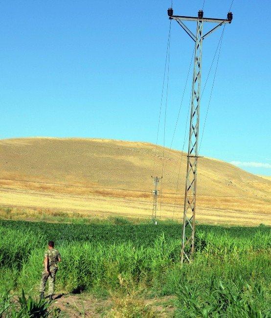300 Liralık Kazanç İçin 3 Bin Liralık Elektrik Harcanıyor