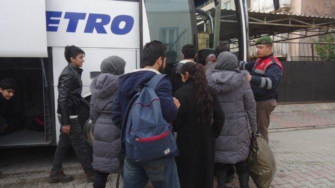 Ayvacık'ta 186 Kaçak Yakalandı