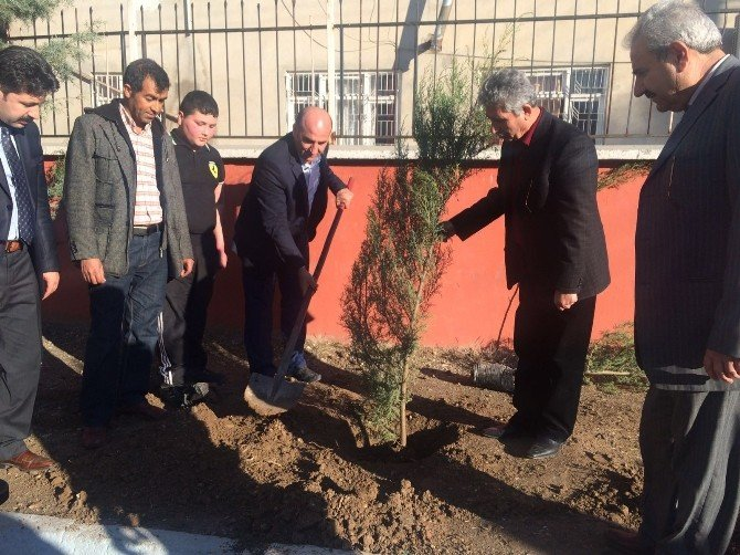 'Bir Ağaç, Bin Umut' Fidan Dikim Kampanyası