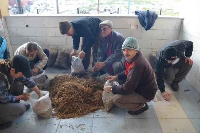 İvrindi'de Çiftçiler Mantar Üreticisi Olacak