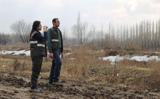 Iğdır'da Kış Ortası Su Kuşu Sayımları