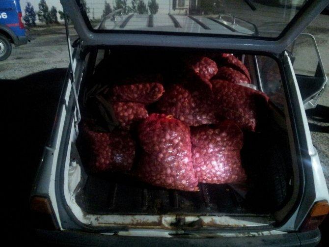 Üç ton kaçak midye yakalandı
