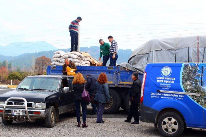 Çiftçiye 130 ton patates tohumu dağıtıldı