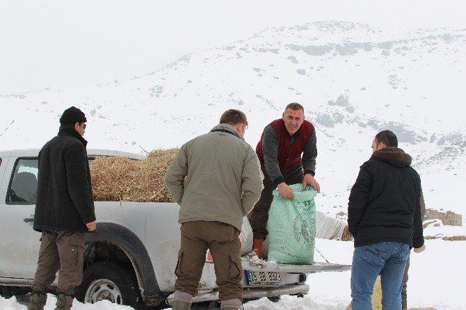 Patnos'ta Doğaya Yem Bırakıldı