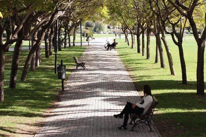 Adana'da Son 66 Yılın En Sıcak Şubatı Yaşanıyor