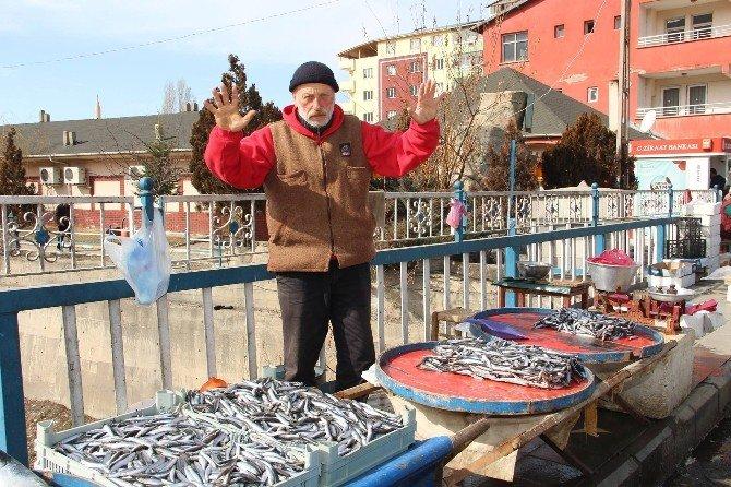 Hamsi Fakir Balığı Oldu