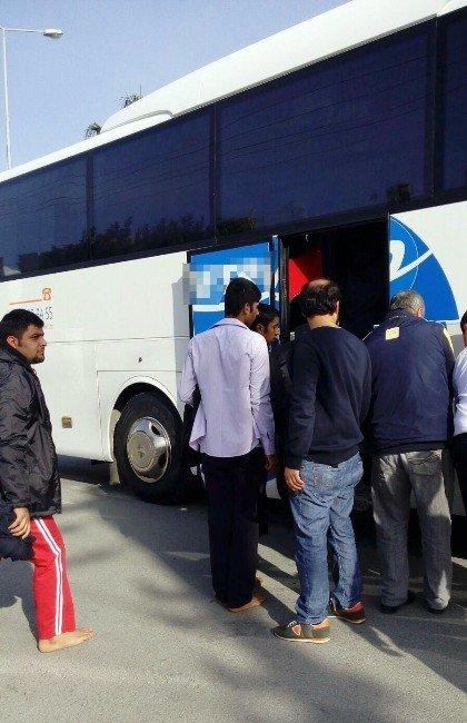 Bodrum'da 149 Mülteci Yakalandı