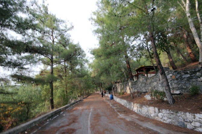 Düziçi'nde Aziz Sancar Eğitim Köyü Açılıyor