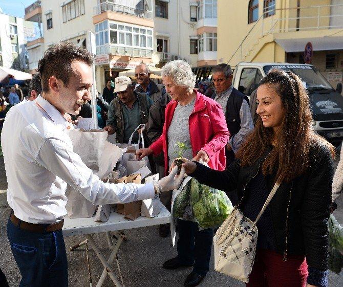 Muratpaşa Belediyesi Pazarlarda Fide Dağıtıyor