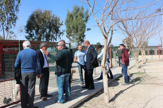 Sokak hayvanları için kurulan komisyon Ceyhan'da incelemelerde bulundu