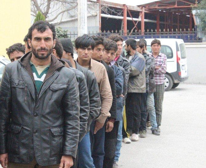 73 Afgan Mülteci Sakarya'da Yakalandı