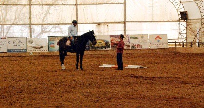 Şampiyon Atlar, Hayatlarının Son Deminde Terapide Kullanılıyor