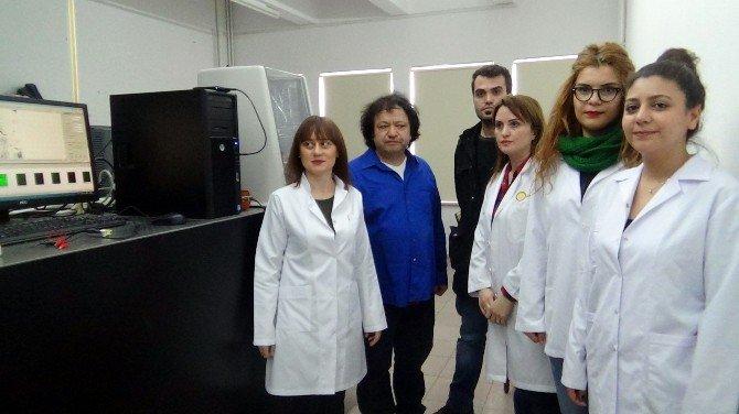 SDÜ'de Üretilen Nanomotorlarla Kanser Tedavi Edilecek
