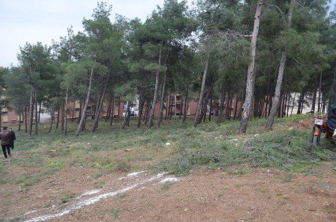Kırıkhan'da Ağaç Kesimini Vatandaşlar Engelledi