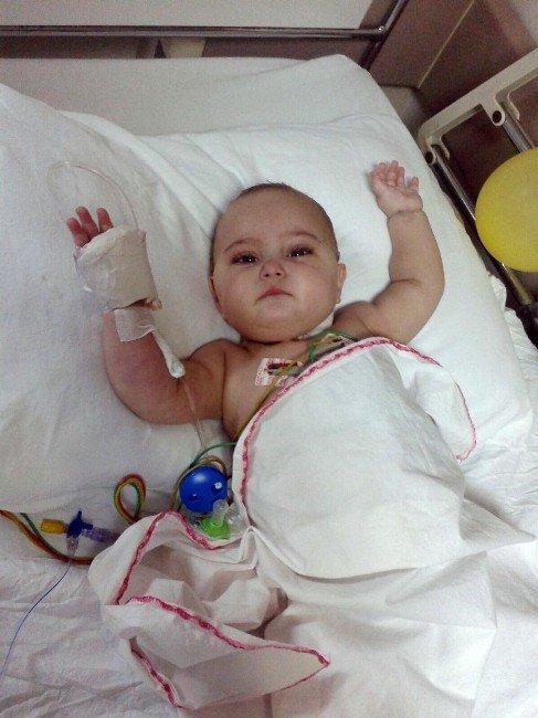 Azra Bebek Lösemiyle Ailesi Parasızlıkla Mücadele Ediyor