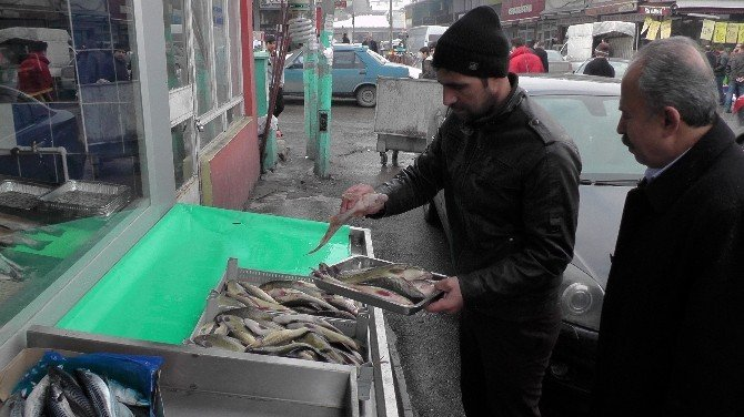 Muş Balığı Revaçta