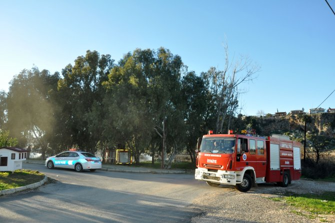 Antalya'da 15 dönümlük sazlık alan kül oldu