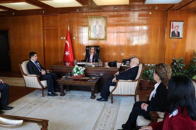 Sinop'ta Vergi Haftası Kutlamaları