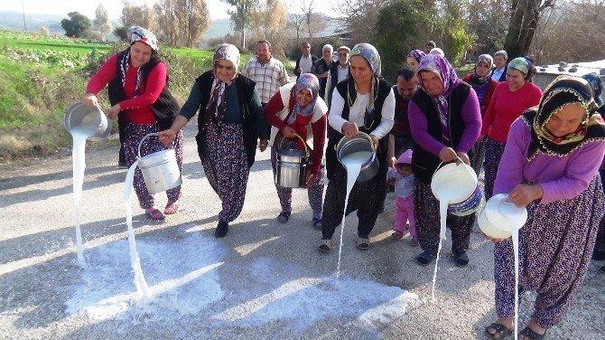 Köylü Kadınlar Sütlerini Sokağa Döktü