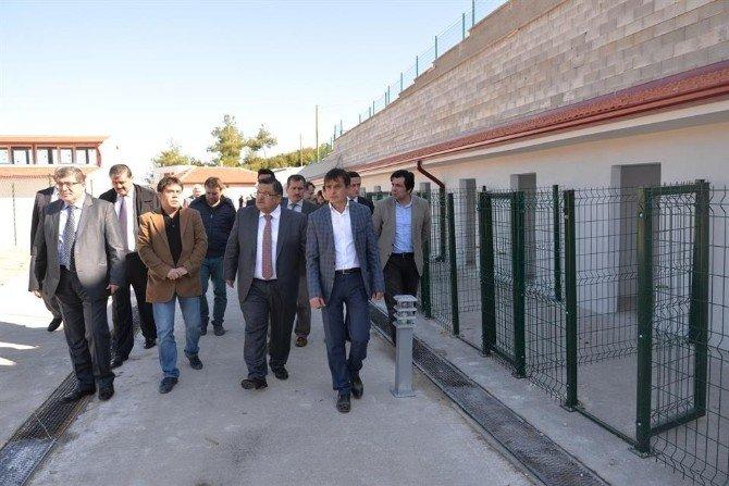 Başkan Yağcı, Sokak Hayvanları Tedavi Ve Rehabilitasyon Merkezi'nde İncelemelerde Bulundu