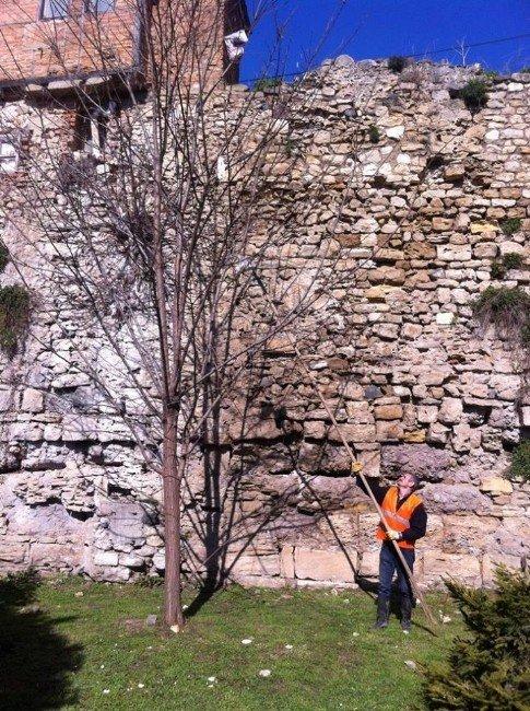 Sinop Belediyesi Temizlik Çalışmaları