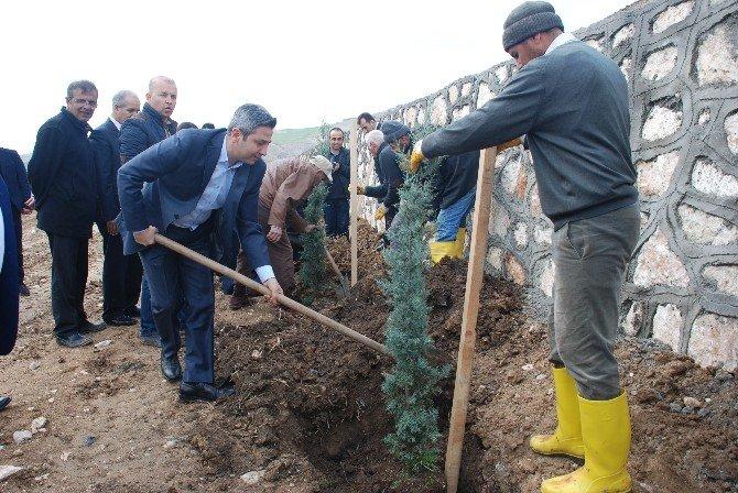 Milletvekilleri Beşpınar'a, Ağaç Dikti