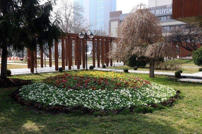 Büyükşehir'den 2 Milyon Çiçek