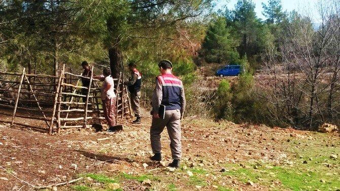 Keçi Hırsızları Jandarmadan Kaçamadı
