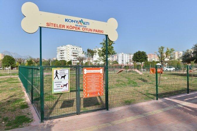 Siteler Mahallesi'nde Köpek Oyun Parkı Açıldı