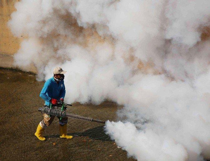 Şanlıurfa'nın Haliliye İlçesinde Sineksiz Bir Yaz İçin Çalışmalar Devam Ediyor
