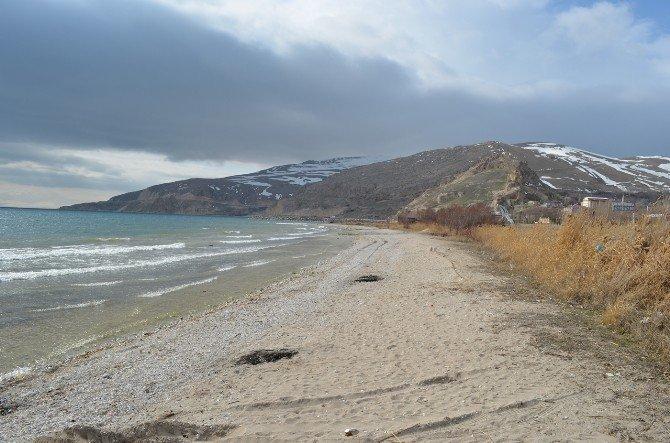 Van Gölü Sahilleri Temizlendi