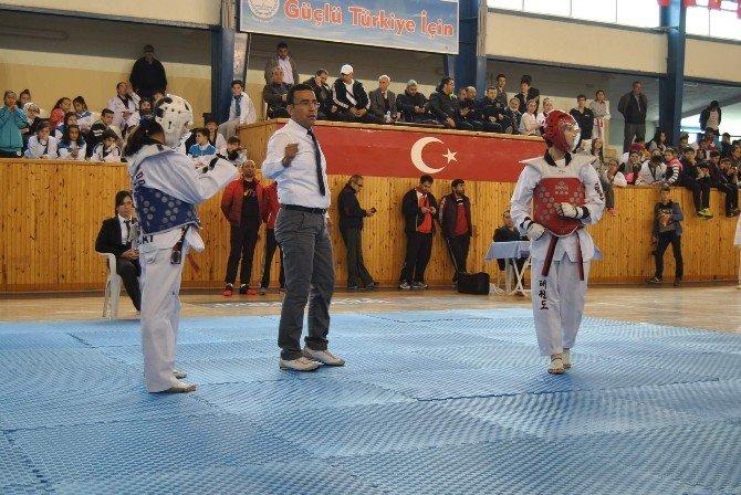 Analig Taekwondo Yarı Final Maçları Nevşehir'de Başladı