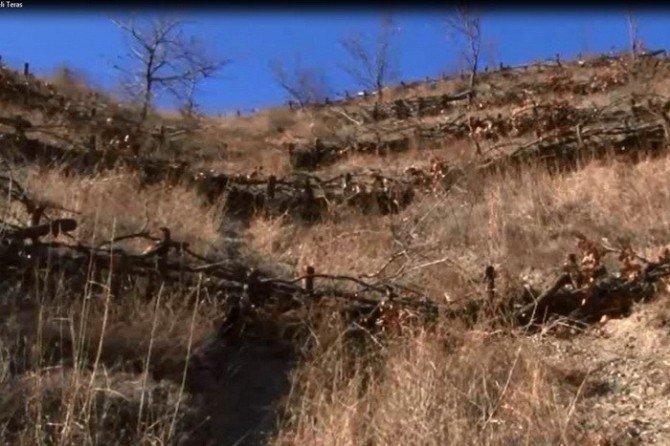Düzce'de Erozyonla Mücadele Ve Ağaçlandırma Eğitimi Yapıldı