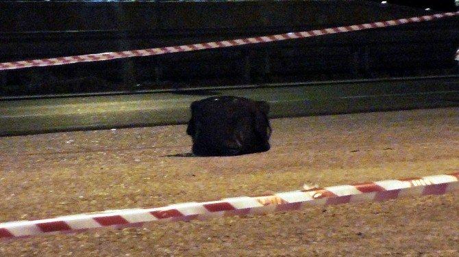 Yolcu Otobüsünde Bomba Paniği